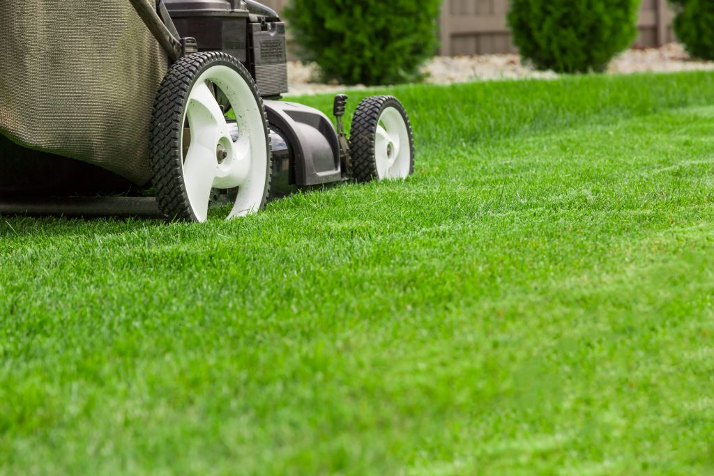 landscaping arlington tx
