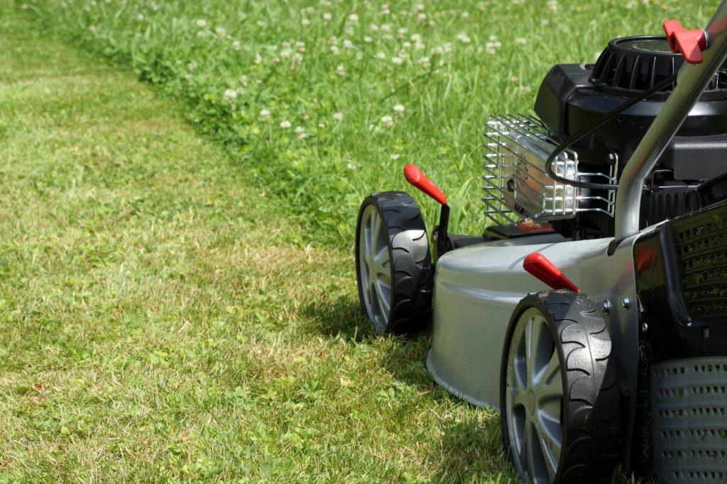lawn services arlington tx