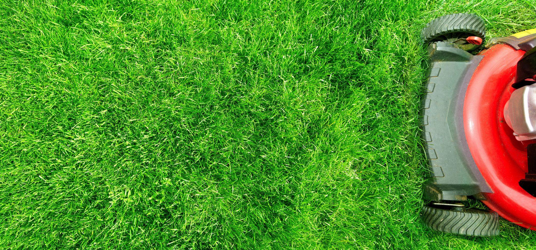 lawn services in arlington tx
