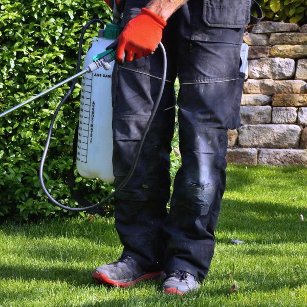 lawn service arlington tx